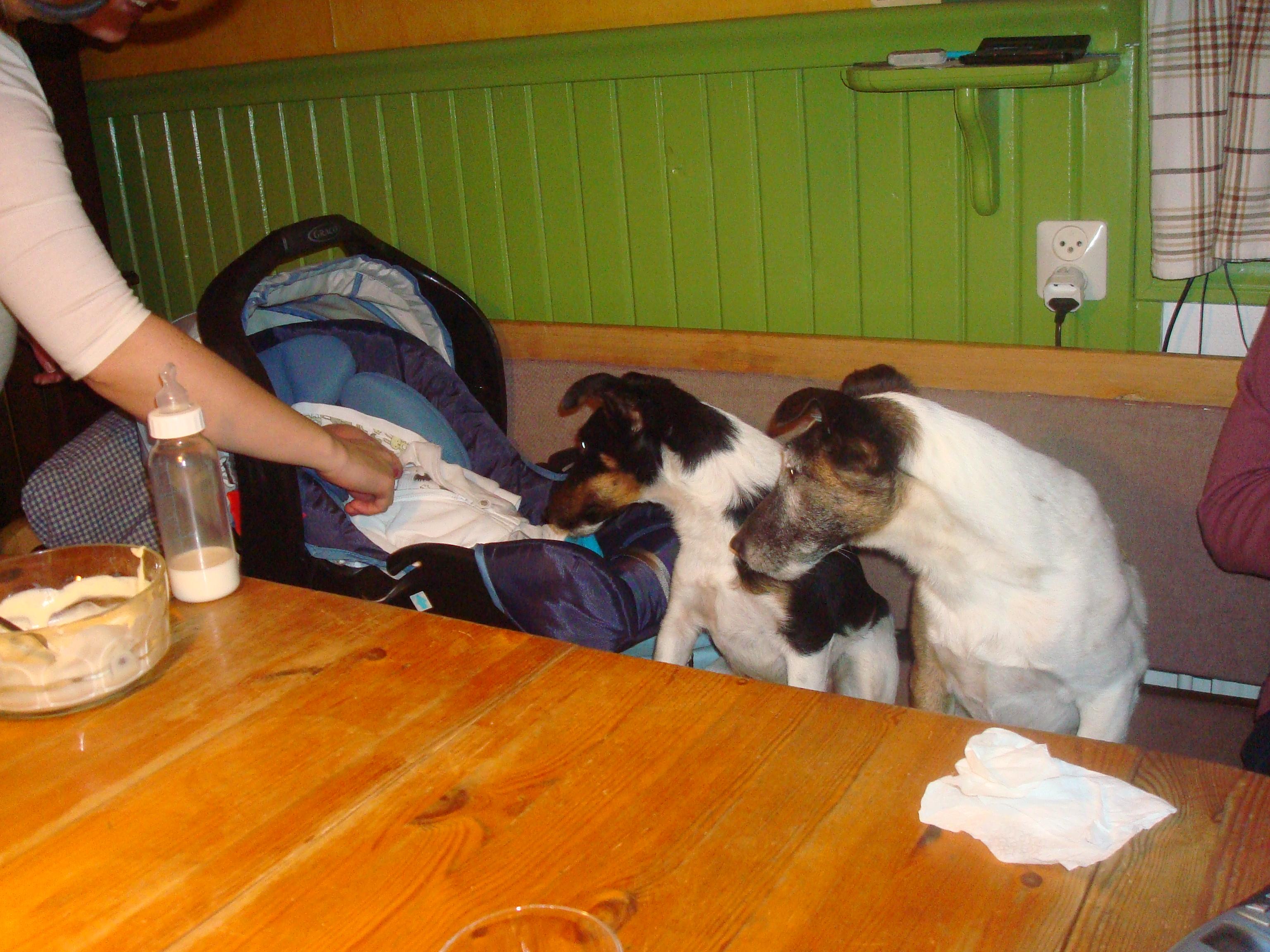 Malva och Affe har full koll på Simon
